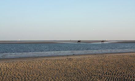Beach Guide: West Beachlands
