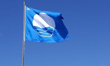 Hayling Blue Flag award – 24 years flying!